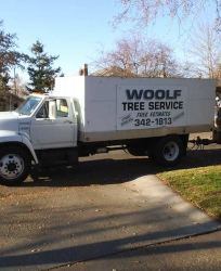 Woolf Tree Services Truck